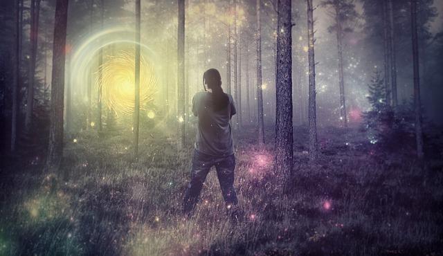 světýlka v lese