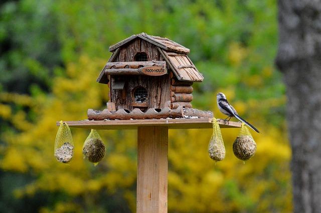 domeček pro ptáčky