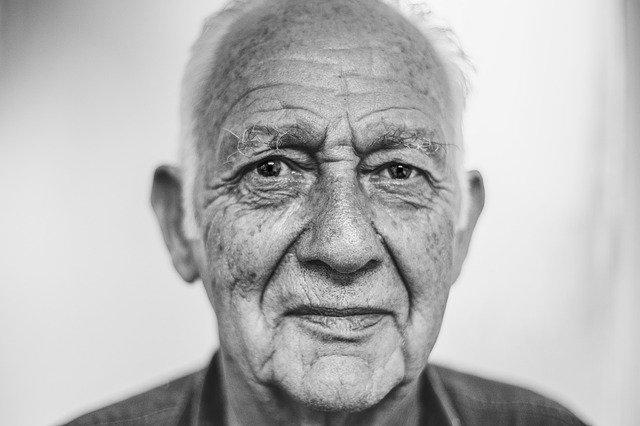 šedivý senior
