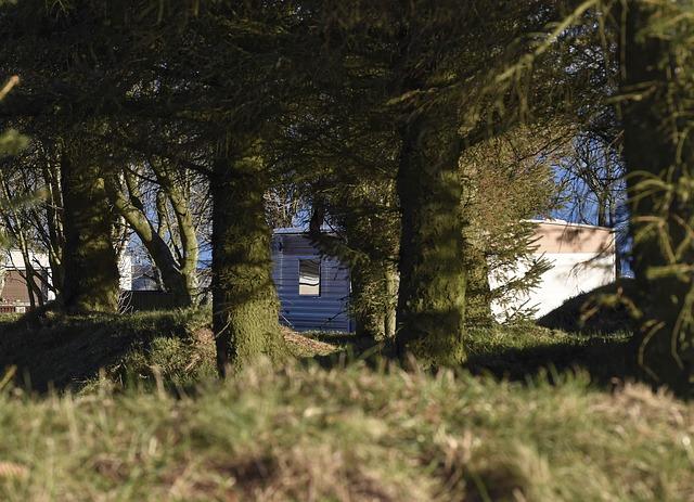 Mobilheim u lesa